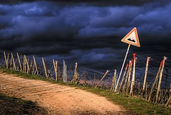 A Minute Of Silence (_David_Meister_) Tags: light cloud storm sign clouds germany landscape deutschland path wolken atmosphere schild rheintal landschaft soe atmosphre rdesheim weg wein weinberg zeichen verkehrszeichen whine unwetter davidmeister