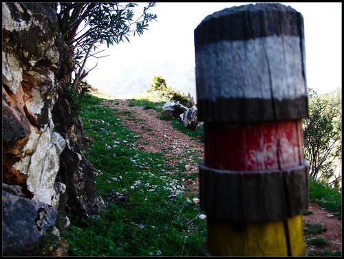 Ruta de Juanar - Istán (23)