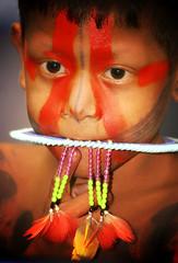 Criança indígena da amazônia (Ricardo_ Lima) Tags: brazil brasil para belem indigenous amazonia