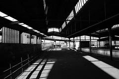 Lichteinfall (kagamiyama) Tags: station japan digital train hamburg bahnhof altona dp1 lostplace sigmadp1s