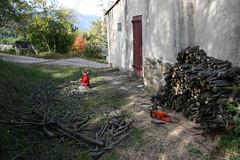 corvée bois