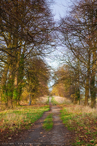 Quakers Walk, Devizes