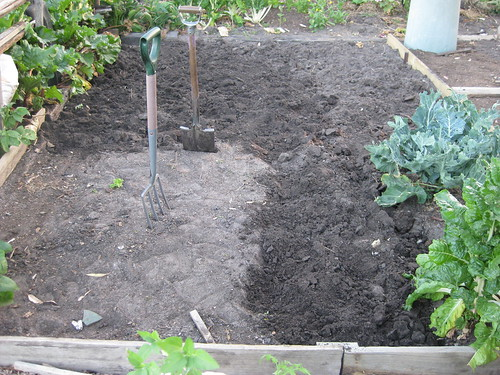 community garden soil preparation