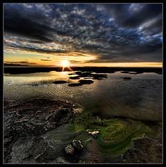 Envy (|sumsion|) Tags: sunset usa green landscape utah nikon october antelopeisland greatsaltlake envy 2009 verticalpanorama d90 bridgerbay sumsion nikond90 sumsioncom