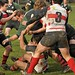 Rugby Fiddlers Green Jena vs. Berliner RC III