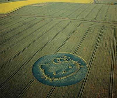 crop-circle-10