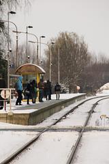 Waarschoot Station, Waarschoot (Tetramesh) Tags: sneeuw tetramesh oostvlaanderen eastflanders vlaanderen belgië belgique belgien belgium snow winter waarschoot oostmoer vlaanderenwinter flanders meetjesland nmbs sncb rail railway trains train stationsplein levelcrossing spoorweg railwaystation platform trainplatfrom winterinbelgië lievegem