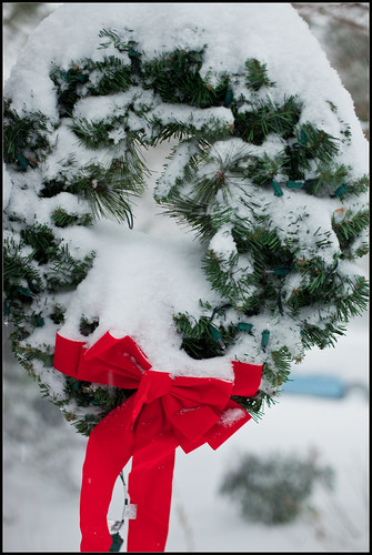Frosty Wreath by RW Sinclair, on Flickr