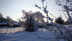 DSC03987 (edwardsgt) Tags: snow december tring 2009