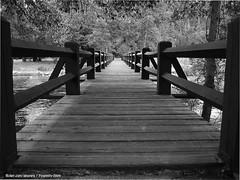 Yosemite_bridge (Dhowayan (Abu Yara)) Tags: