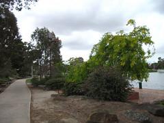 Edwards Park Lake (WindscreenCam) Tags: park lake au australia melbourne victoria reservoir vic edwards