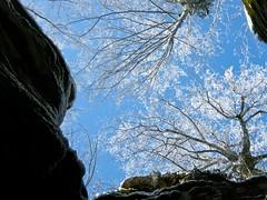 "Dal basso verso l'alto ("" paolo ammannati "") Tags: panorama natura cielo neve toscana inverno riflessi verna casentino ghiaccio effettinaturali fotoconneve panoramaconneve"