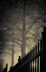 One Foggy Night... (miche11) Tags: fog night fence dof