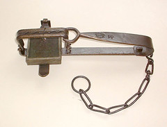 Vermin Trap, Wednesfield, 1867-1900, BIMW25