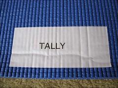 Tallys Yoga Mat