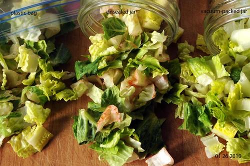 01 26 10 lettuce