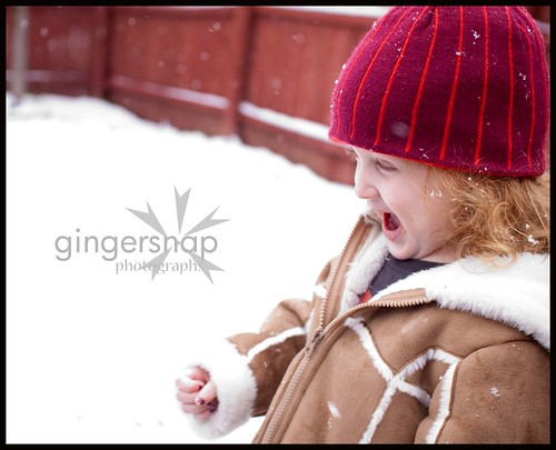 feb snow day4