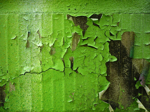 green wall- free texture
