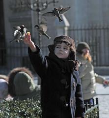 The Bird Feeder (scottnj) Tags: boy paris france bird birds child notredame parisfrance handfed scottnj