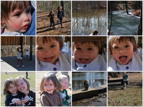 Bowie Nature Park Mosiac
