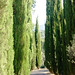 holiday-home-tuscany