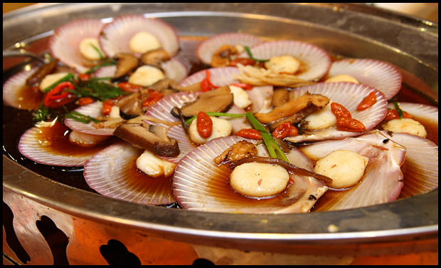 steamed-scallops
