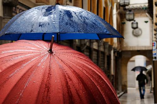 La vida secreta de los paraguas (by javi_indy)