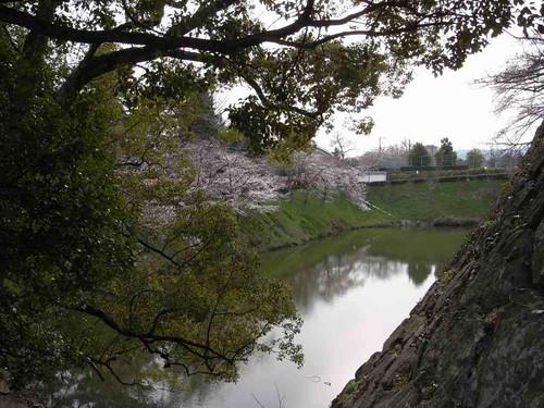 大和郡山お城まつり-06