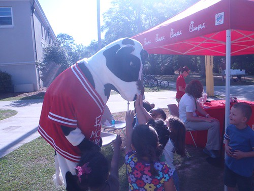 Celebrity Appearance by the Chick-fil-A Cow