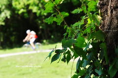 Watching from the woods... (Barbara Taeger Photography) Tags: bike mobile 50mm nikon dof path may biker 365 framing spectator owp ourdailytopic odc2 ourdailychallenge