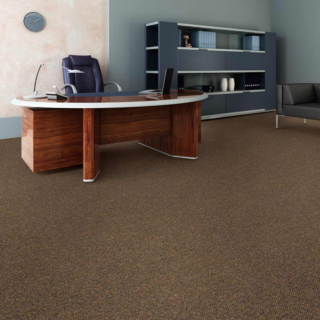 "Hollytex ""Canvas"" Carpet from Beaulieu"
