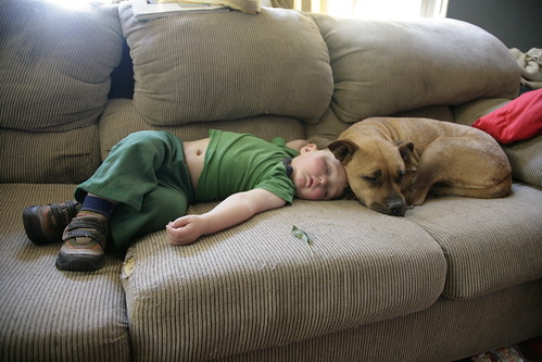 Joe and Omie, napping.