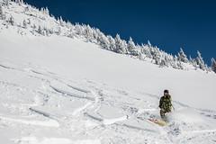 Cat Skiing Revelstoke 07.02.17 (Tom Poole Photography) Tags: revelstoke skiing snowboarding catskiing powder offpiste freeride bc britishcolumbia explorebc tompooleuk tompoolephotography extreme sports gnar nikon nature