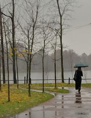 For my friend Maryuta (svetlana1961(very busy)) Tags: autumn rain russia petersburg blueribbonwinner abigfave platinumphoto flickrdiamond thedantecircle newgoldenseal