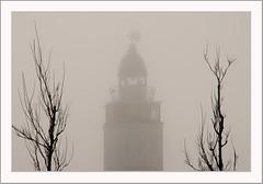 Harlingen-au-brouillard (Don Pedro de Carrion de los Condes !) Tags: lighthouse mist silhouette fog phare depth vuurtoren harlingen donpedro