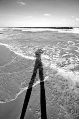 Long Legs for a Long walk home (Shigow) Tags: shadow brazil bw white fish black praia beach branco brasil de nikon mine long waves underwater legs mergulho diving sombra pb preto victor tokina porto peixe e pernas pernambuco ondas galinhas d300 1116 longas shigueru subaquatica ituverava shigow
