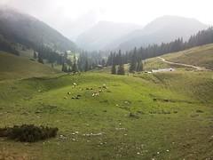 Wuhrsteinalm Chiemgau (ThaScissor) Tags: panorama im natur berge alm wandern ausblick chiemgau winkl reit schleching wuhrsteinalm