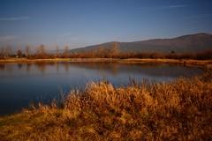 Cerknica lake in autumn (Karmen Smolnikar) Tags: longexposure lake water slovenia slovenija cerknica fabbow