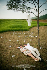 Grassland of love (*K Phong*) Tags: