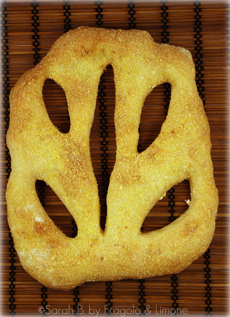 fougasse cotta