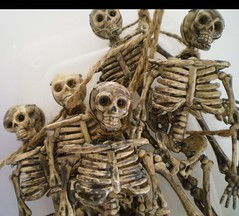 An Angry Mob (Enchanticals~ Death in Family) Tags: closeup dead skeleton toys death miniatures miniature scary teeth anger spooky mob plastic hate horror undead skeletons secretlifeoftoys livingdead spooks 112scale etsylove etsyseller etsyartist etsyteams minimakers damteam teammids enchanticals minitreasures enchanticalsetsy miniaturesindollhousescale funwithinanimateobjects dollhousesandminiaturesforthem miniaturesgeneral spookydollhouseminatures