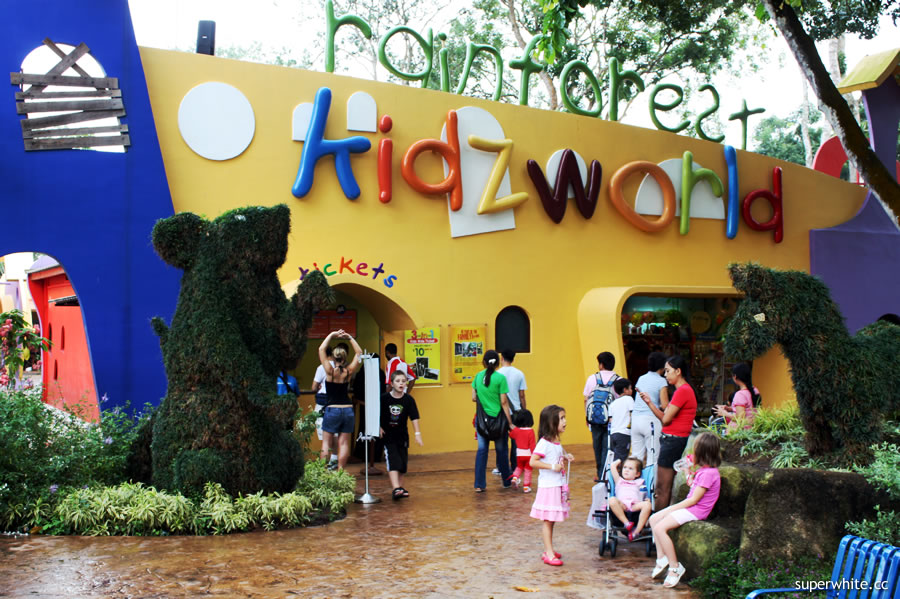 Rainforest kidz world