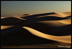 The Sound of Silence ! (Bashar Shglila) Tags: peace calm libyan libya sahara sahran sand dunes desert shadows lights light shadow tranquility thepowerofnow    libyen lbia   libi lbija libija  lby libja lbya liiba libiya  liviya  livi  world best photos photography worlds top most popular gallery