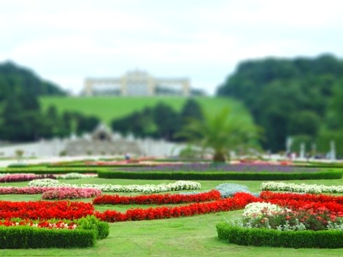 Garden behind a palace in Vienna