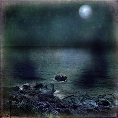 Night of the sea (shastadaisy~) Tags: ocean dark evening moonlight wildflowers clifftop awardtree magicunicornverybest magicunicornmasterpiece nightofthesea