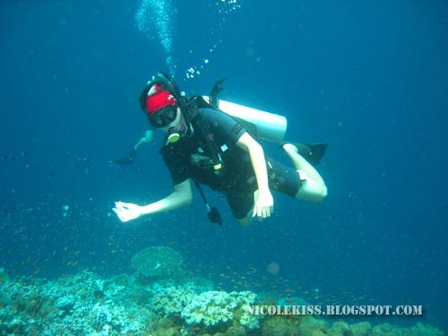 gerald diving