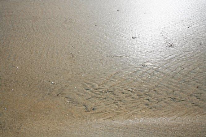 Shores4