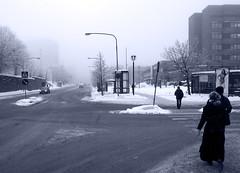 Stadshagsdimma (vargklo) Tags: vinter stockholm sn morgon bl dimma svartvitt stadshagen sanktgransgatan tonad