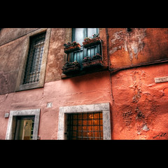 Rome Windows 101