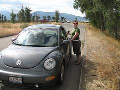 Roadside photos (chimpsonfilm) Tags: wyoming grandtetons tetons 2008